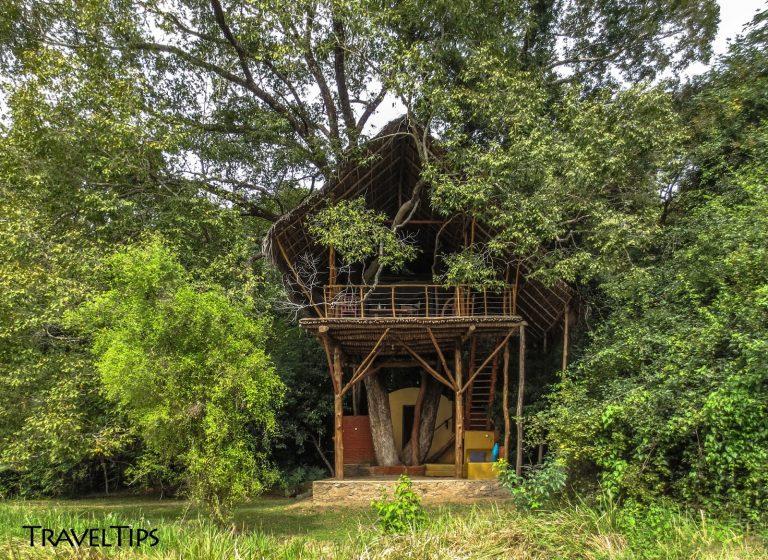 Unusual Place to stay in Sigiriya