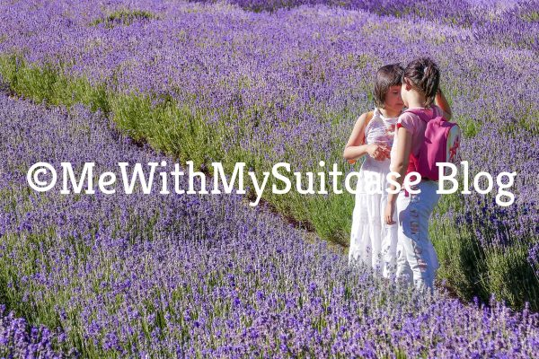 children casual talk at the lavender field